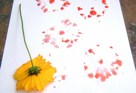 الأزهار