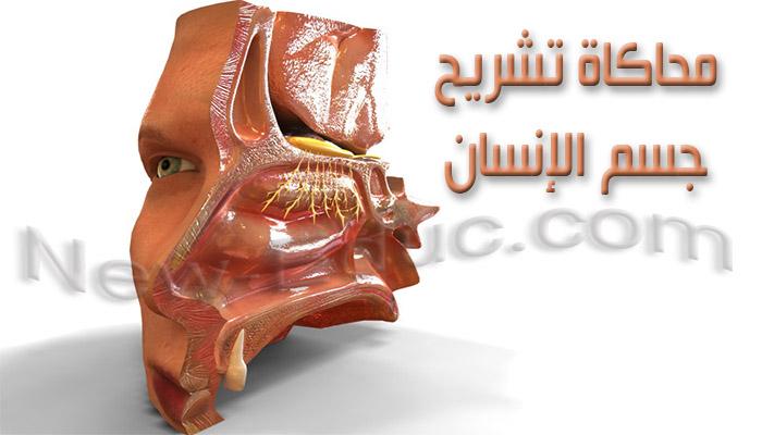 محاكاة تشريح جسم الانسان