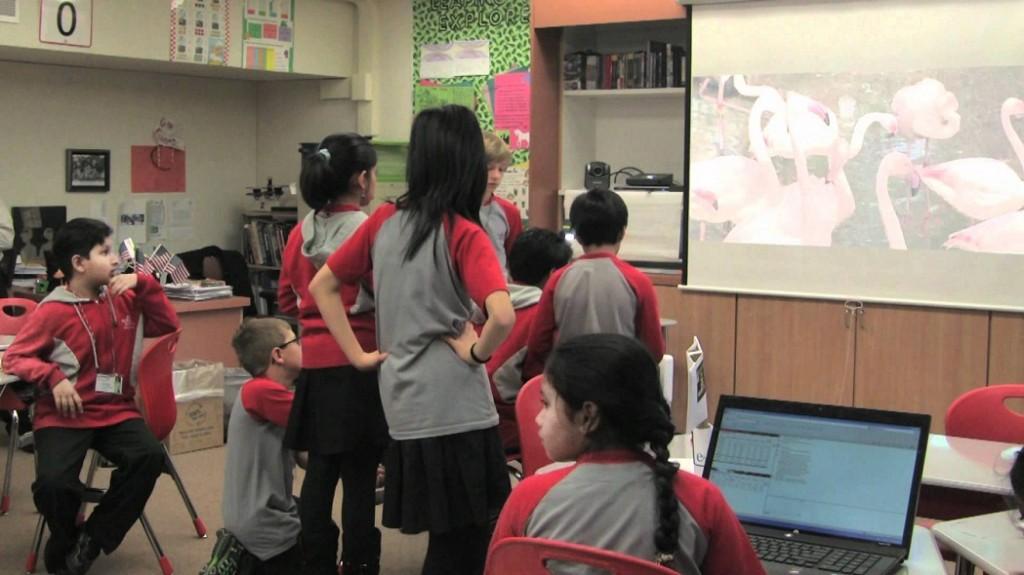 الفيديو في التعليم