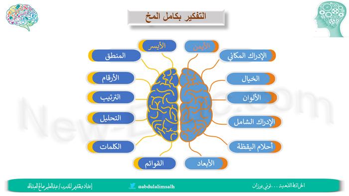Brain Neweduc 5