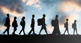 هجرة الكفاءات