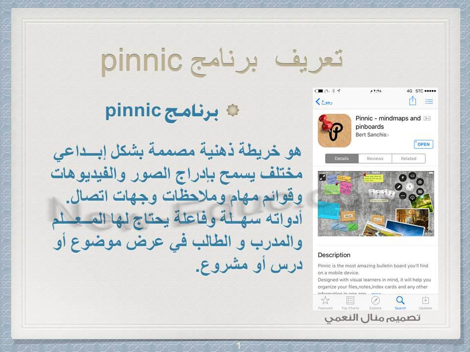 Pinnic 1