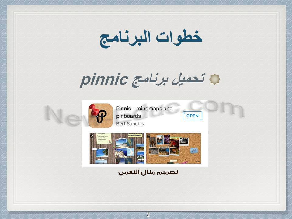 Pinnic 2
