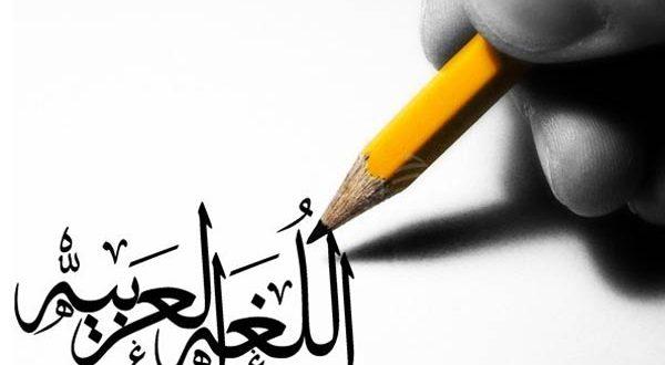 درس اللغة العربية في المنهاج المغربي الجديد