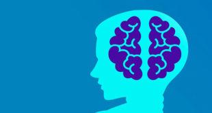 نظرية الحمل المعرفي العبء المعرفي التفكير التصميمي