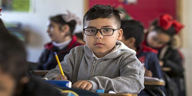 التعليم المتمايز وصعوبات التعلم