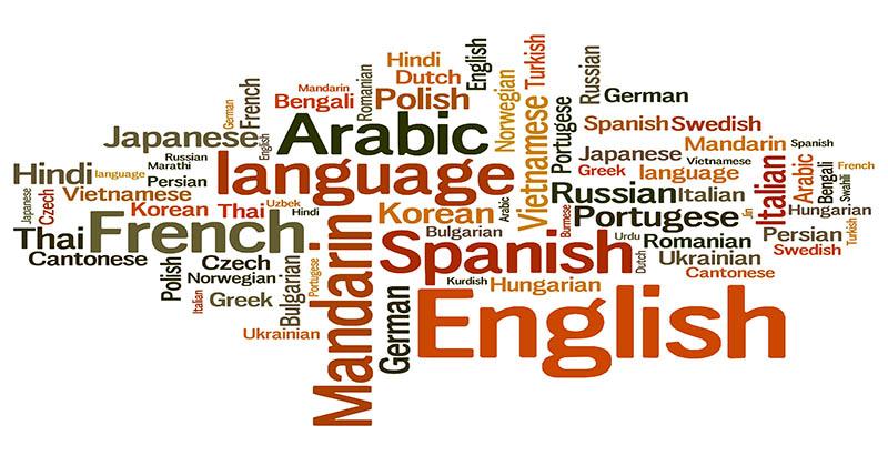 التعدد اللغوي بمقاربات متعددة