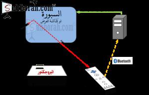 wiwbdiagram