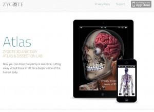 المواقع الإلكترونية للموارد الرقمية zygote